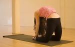 Верблюд в йоге